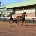 Formations cheval du campus de Graignes